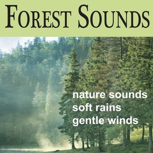 Image for 'Forest Sounds: Soft Breezes, Songbirds, Rains, Sounds of Nature, Echoes of Nature Sounds'