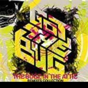 Image pour 'Got The Bug: The Bugz In The Attic Remixes Collection'