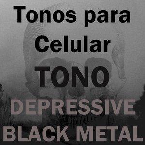 Image for 'Tono Depressive Black Metal'