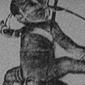 Bild för 'Elektrode'