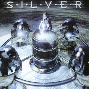 Immagine per 'Silver'