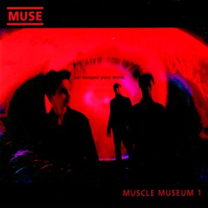 Image for 'Muscle Museum 1'