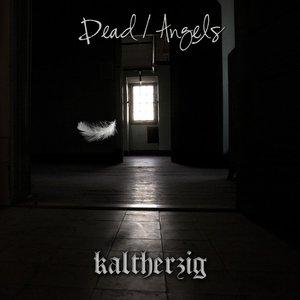 Image pour 'Dead / Angels 2011'