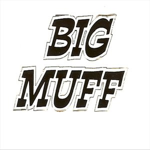 Image for 'The Theme From Big Muff'