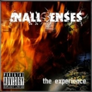 Image for 'The Experience'