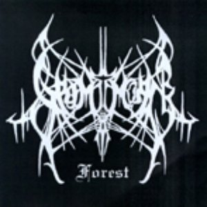 Image for 'Grimthorn's Forest'