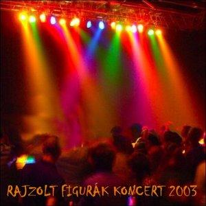 Image for 'Koncert 2003'