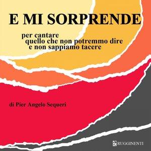 Image for 'E mi sorprende (Per cantare quello che non potremmo dire e non sappiamo taccere)'