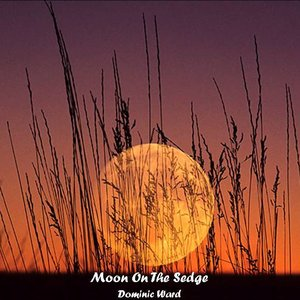 Image for 'Moon on the Sedge'