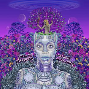 Immagine per 'New Amerykah Part Two: Return Of The Ankh'