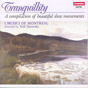 Image for 'Tranquillity – A Compilation Of Beautiful Slow Movements'