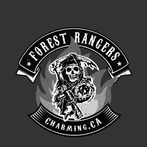 Image pour 'The Forest Rangers'