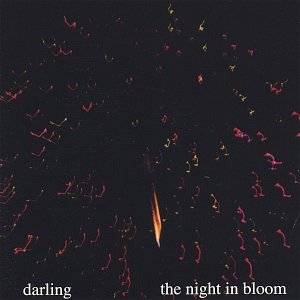 Image for 'The Night In Bloom'