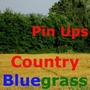 Imagem de 'Country Bluegrass (Banjo & Pedal Steel Guitar)'