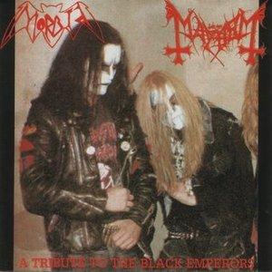 Image for 'Morbid-Mayhem'