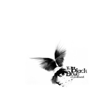 Image for 'The Black Dove Experiment'