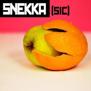 Image for 'Snekka - [Sic] - 2008'