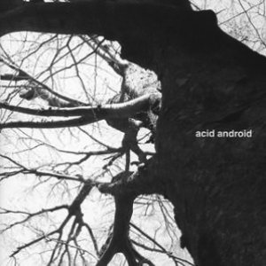Image for 'acid android'