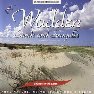 Image for 'Wadden - Sands and Seagulls'