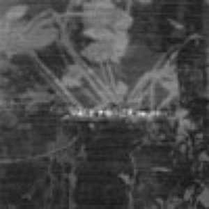 Image for 'polder'