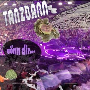 Image for 'Die Tanzbärn'