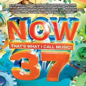 Bild für 'Now That's What I Call Music! 37'