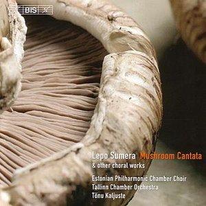 Image for 'SUMERA: Mushroom Cantata / Concerto per voci e strumenti / Island Maiden's Song from the Sea'