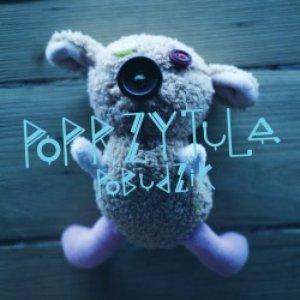 Image for 'Pobudzik'