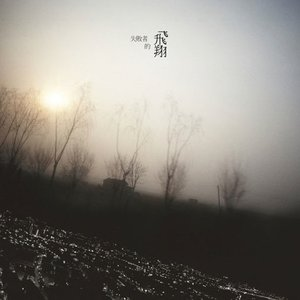 Immagine per '失敗者的飛翔'