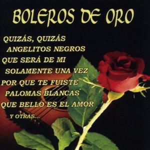 Image for 'Boleros de Oro'