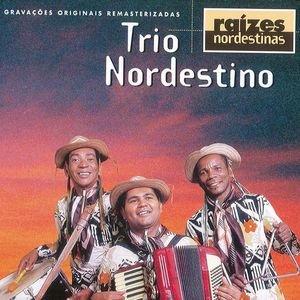 Image for 'Raizes Nordestinas'