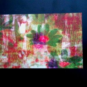 Immagine per 'Plurals / Tuluum Shimmering Split'