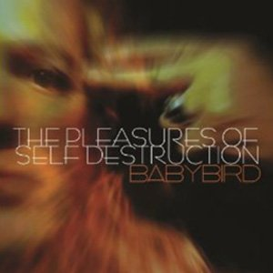 Imagen de 'The Pleasures Of Self Destruction'