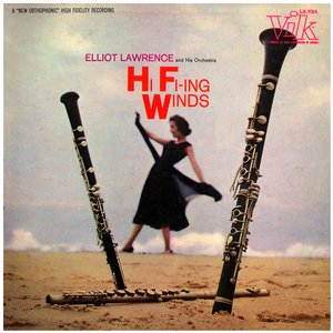 Image for 'Hi Fi-ing Winds'