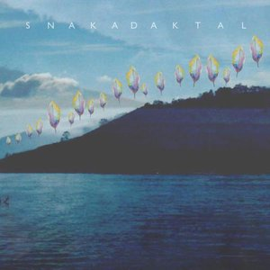 Image for 'Snakadaktal'