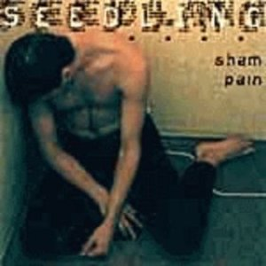 Image for 'Sham Pain'