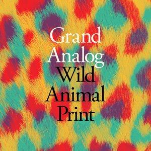 Imagen de 'Wild Animal Print'