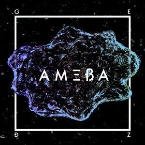 Image for 'Ameba'
