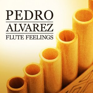 Image for 'Pedro Alvarez - Flute Feelings'