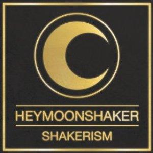 Bild für 'Shakerism (Definitive Edition)'