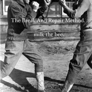 Image for 'Milk the Bee'