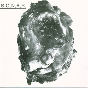 Image for 'Sonar'