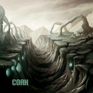 Immagine per 'Coax'