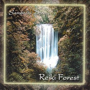 Image for 'Reiki Forest'
