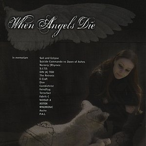 Image pour 'When Angels Die - A Benefit Compilation'