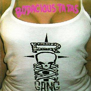 Bild für 'Bodacious Ta Tas: The Best of Roxx Gang'