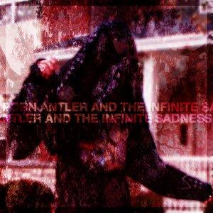 Image for 'Porn Antler'