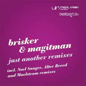 Image for 'Just Another Remixes'