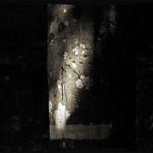 Image for 'Ethan Syann'