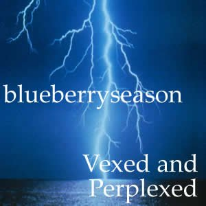 Image for 'vexed and perplexed'
